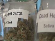 Marijuana Rules, Finally00000001