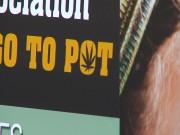 Pot Politics00000004