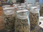 Marijuana Confusion