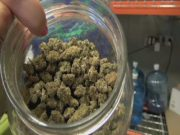 New Marijuana rules under fire00000006